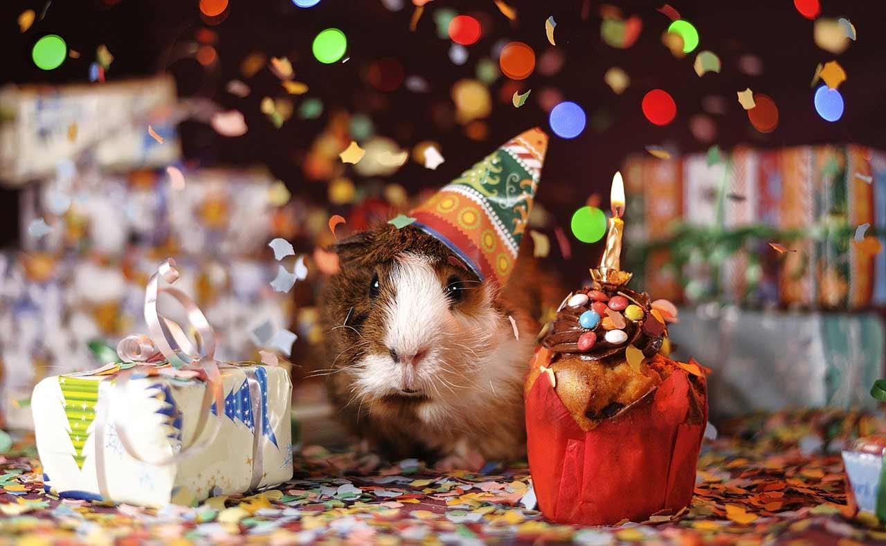 Fêter son anniversaire en temps de Covid